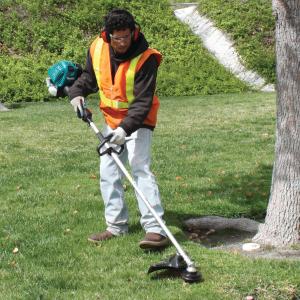 公園の整備イメージ