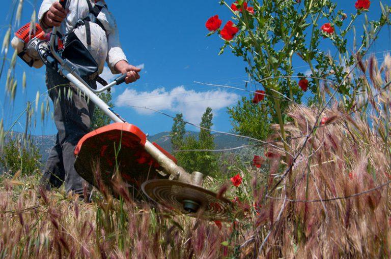 【家庭用から業務用まで】草刈り機・刈払機の選び方とおすすめ機種、メンテナンス用パーツまで一挙ご紹介